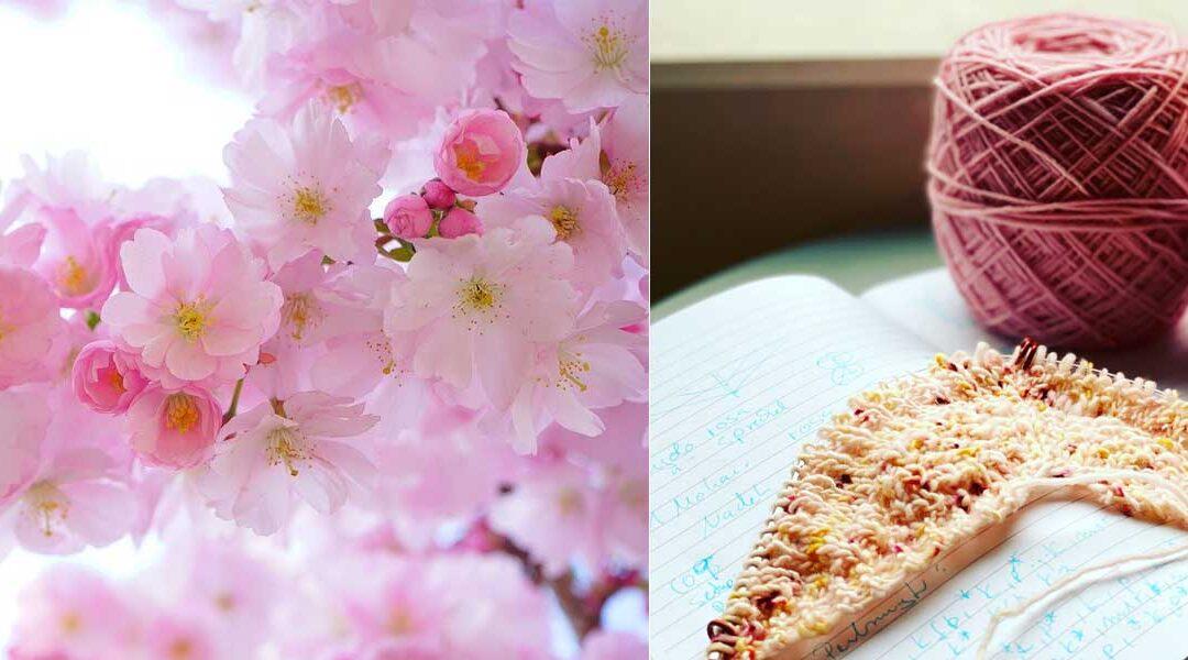 Kirschblüten oder die Entstehung eines neuen Modells